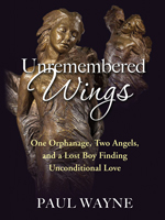 Unremembered Wings